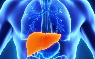 Болезни печени: какие анализы нужно сдать для проверки функционирования органа?