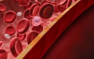 Средняя концентрация гемоглобина в эритроците понижена — что это значит