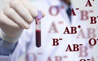 Самая редкая группа крови — статистика в России и в мире