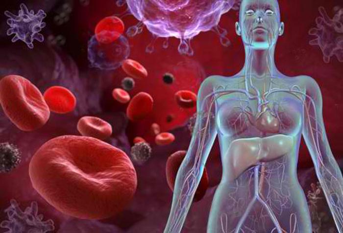 Лимфоциты в крови у женщин 45