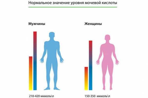 Кровь анализ мочевая кислота в крови